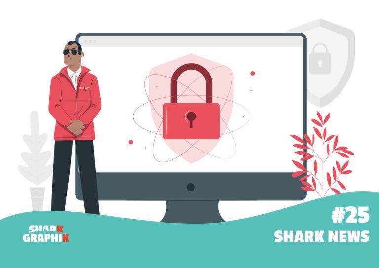 Image représentant la sécurité des sites internet